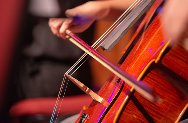 Learn more about String Instruments class